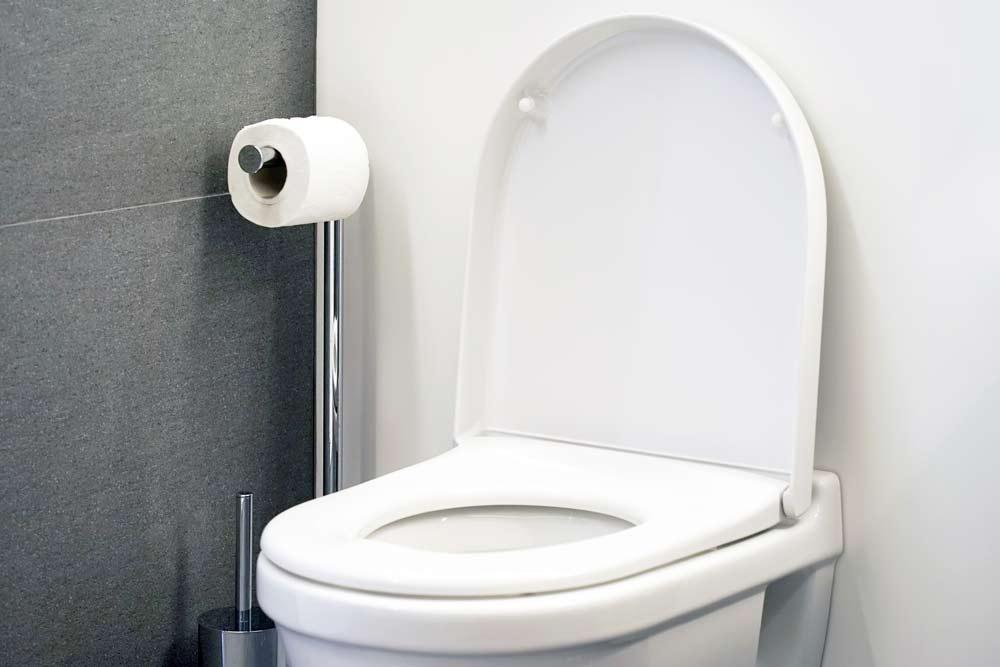 toilettes-bouchees