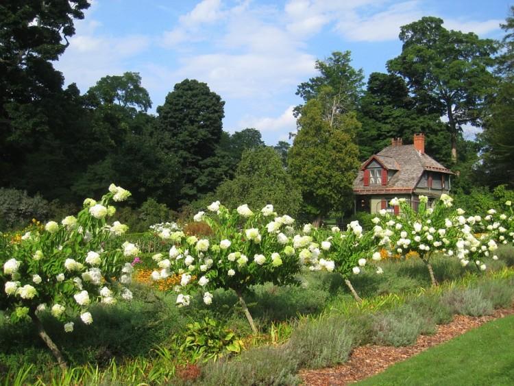 Les avantages de collaborer avec un jardinier professionnel