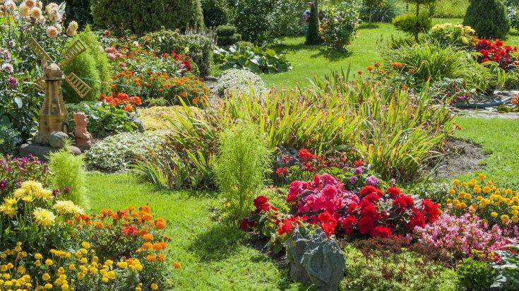 l'entretien de jardin